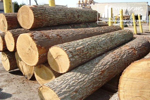 gỗ sồi tự nhiên
